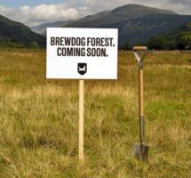 BrewDog inspireert: kordaat idee van Grolsche kornuiten